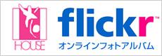 flickr_okazou2.jpg